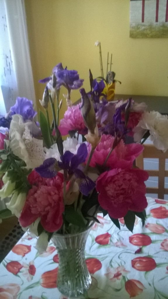 konkurent k dárku v podobě krásné kytice
