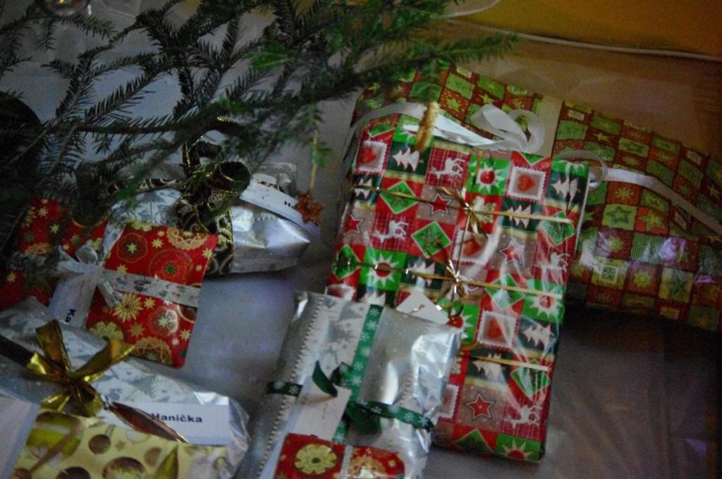 Mé vánoční dárky